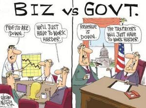 biz vs govt
